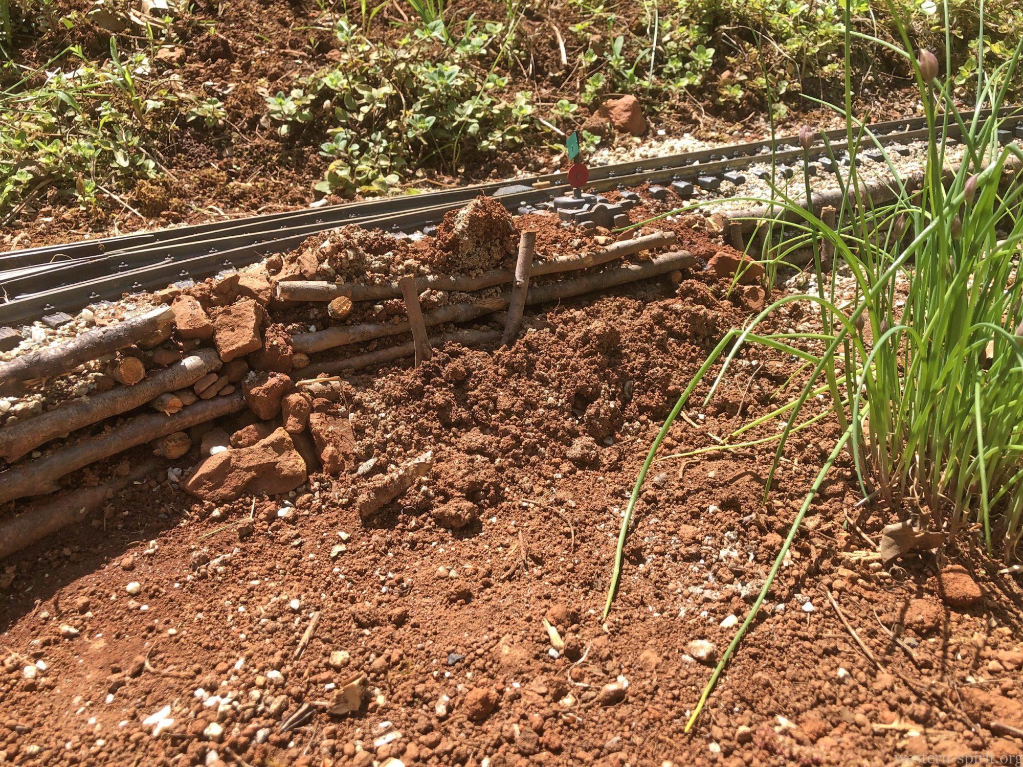 Mole damage to railroad